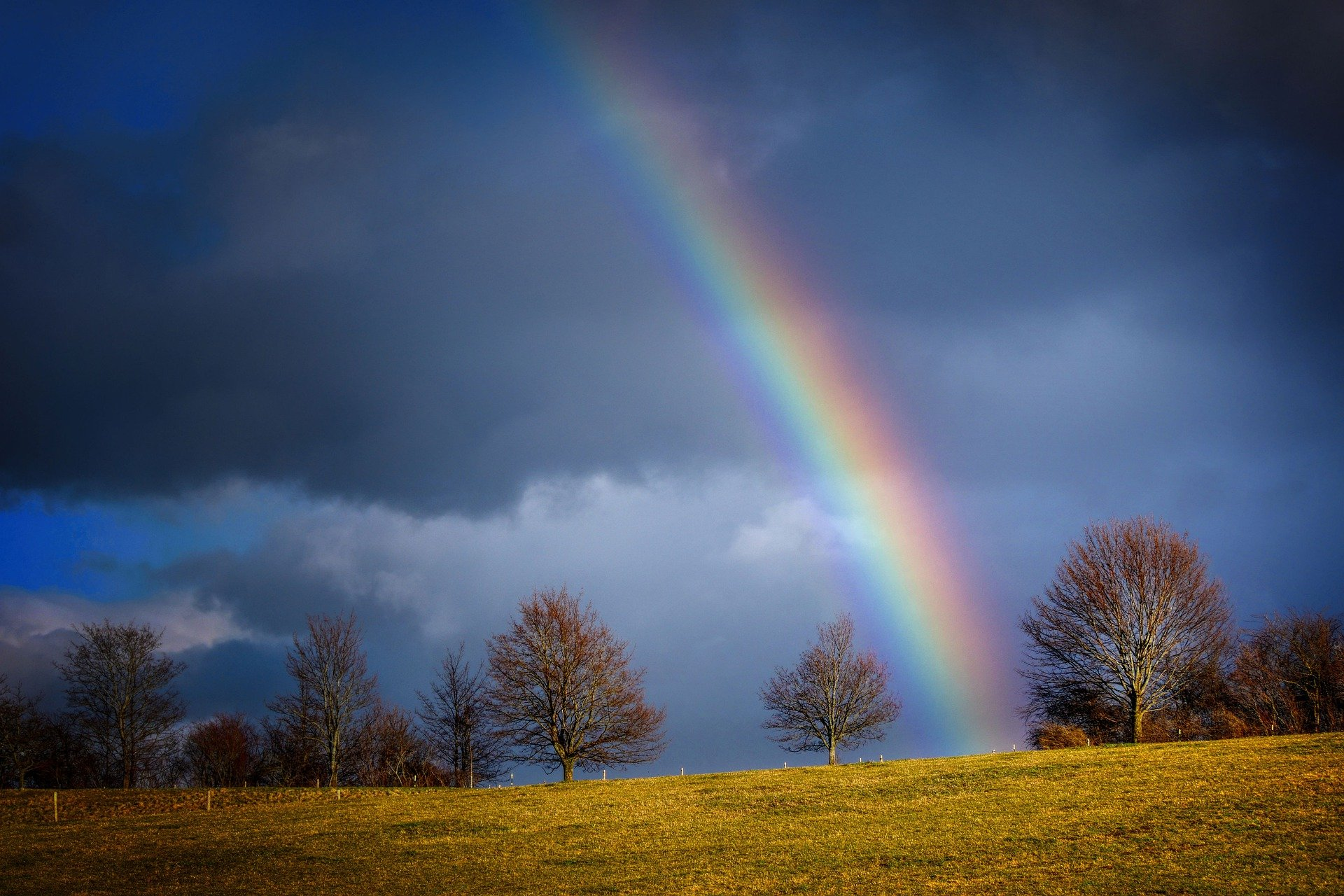 rainbow-5108122_1920 (1)